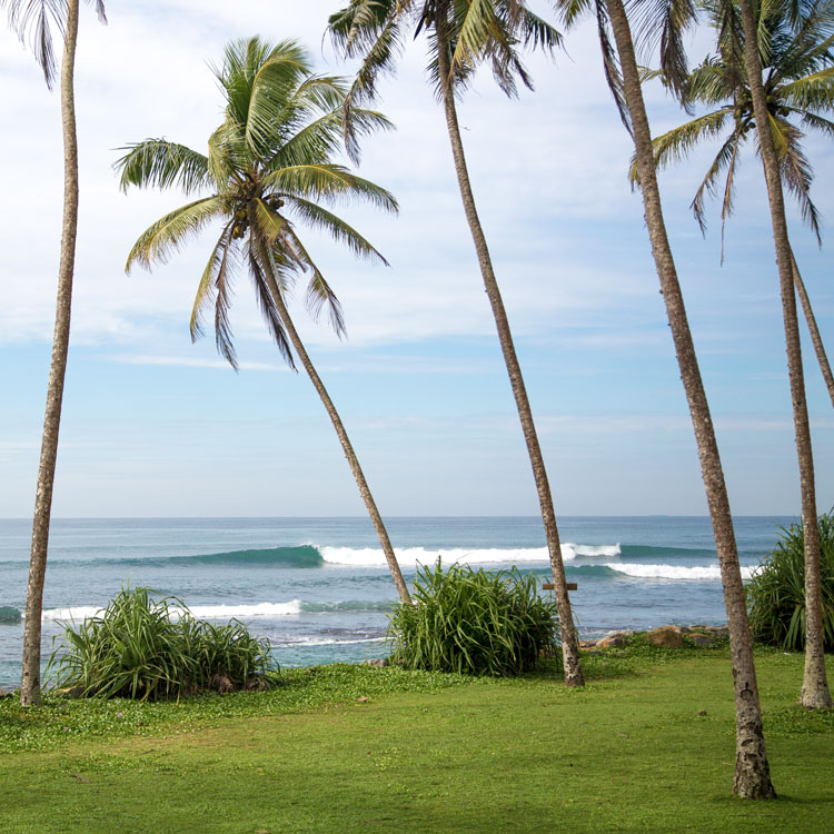 Surf and Yoga Madiah Srilanka