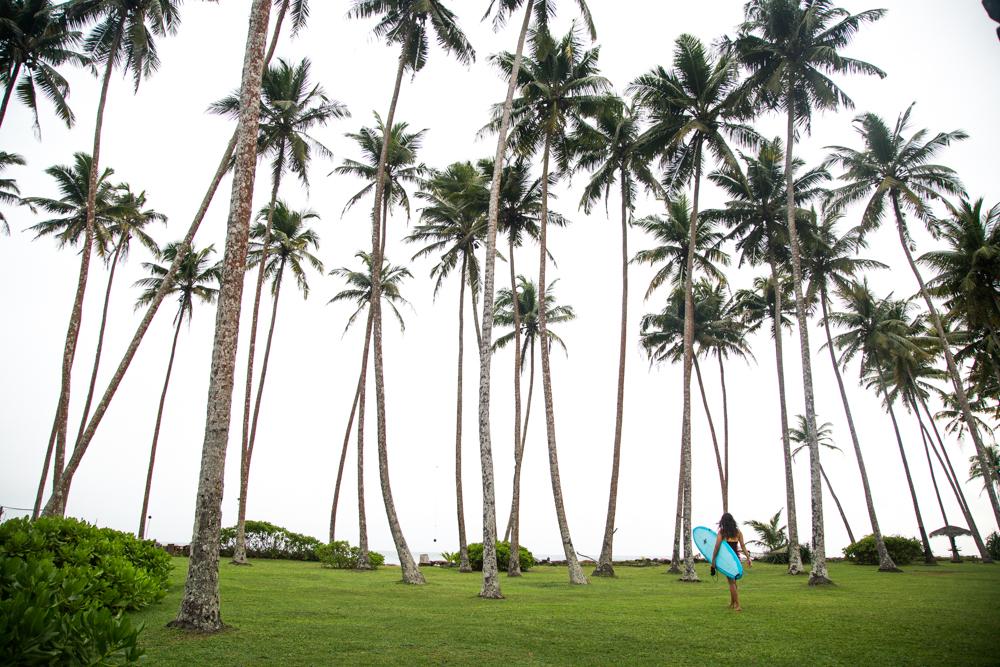 Sri Lanka yoga and surf retreat