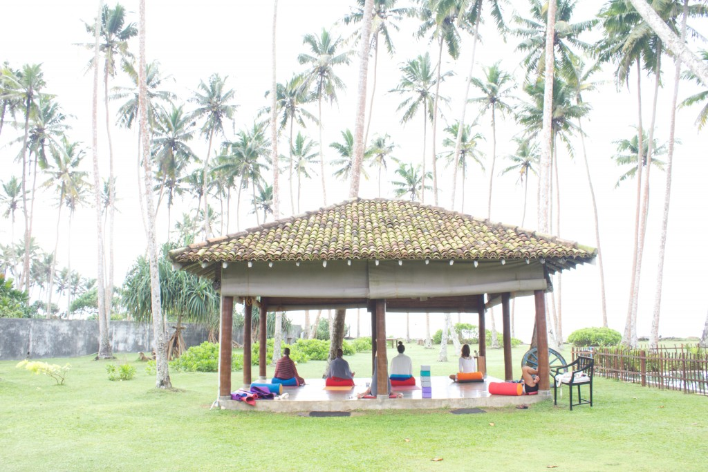 Yoga sri lanka surf retreat