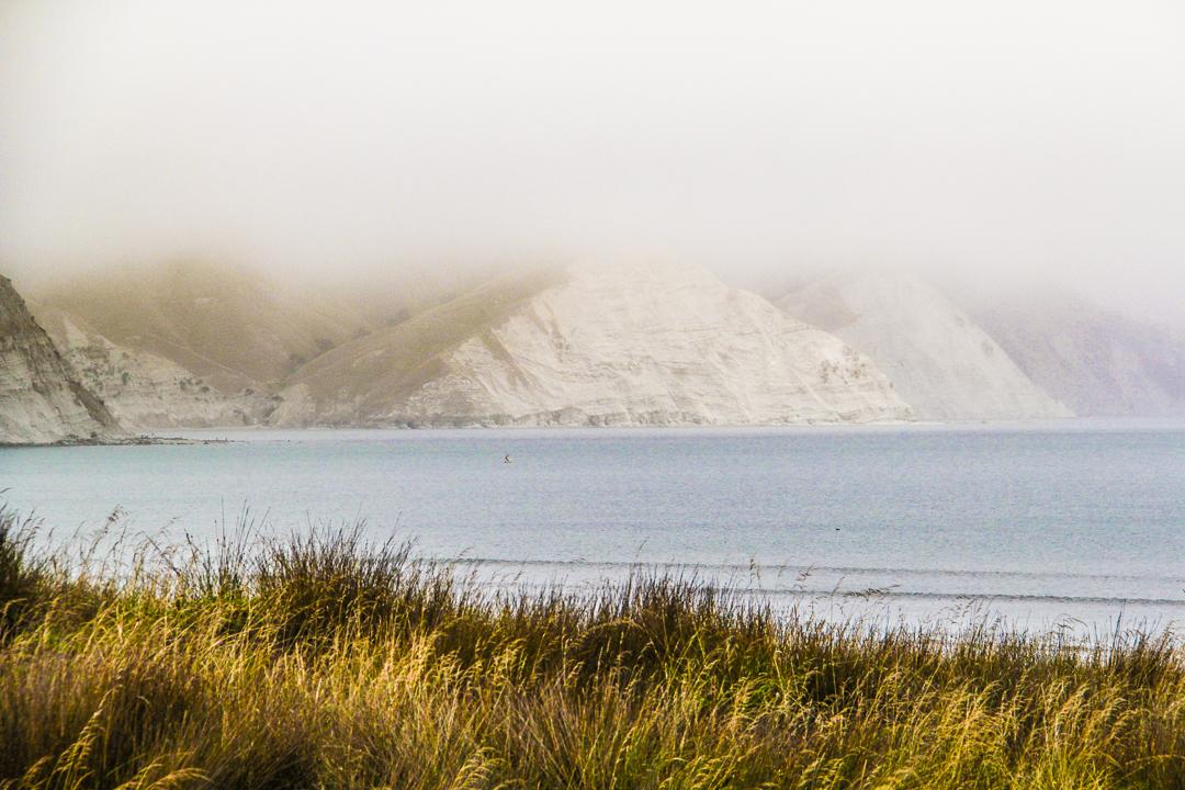 New Zealand - Photo Stuart smythe