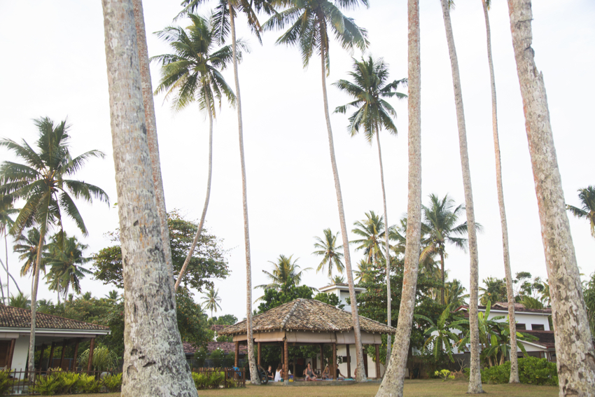 santosha society surf and yoga sri lanka