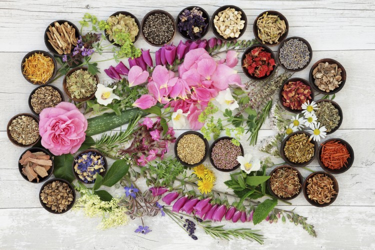 Alternative Herbal Medicine ayurveda yoga
