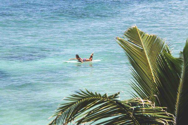 Kori Hahn - surf